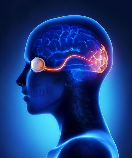 Cerebral Palsy Vision