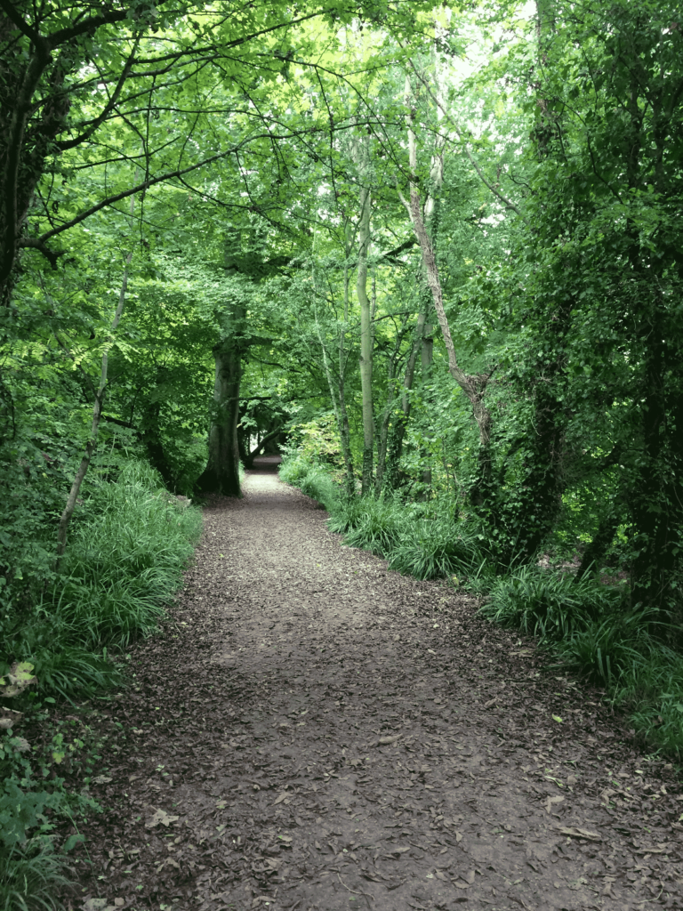 River Shannon trail in Limerick, Ireland