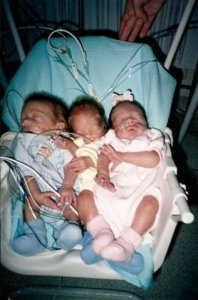 The Shrader triplets all together in a baby swing.