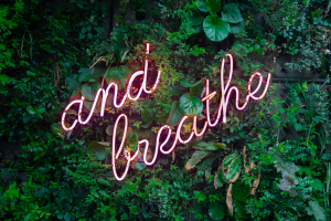 """A lush, living wall of greenery with neon sign that says """"and breathe"""" in script with a pale pink written at a 45 degree angle"""